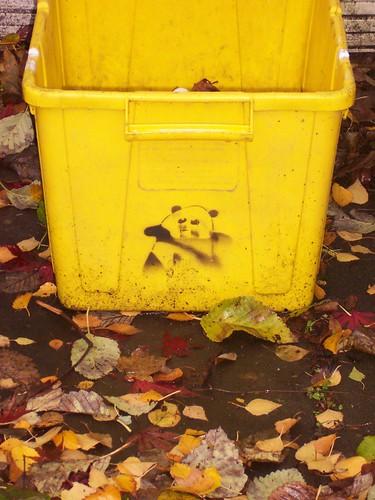 Street art of a panda left on the recycling bin at Rancho Lake
