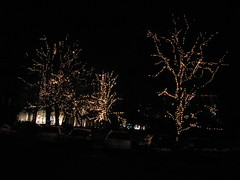 St Andrews Square, Edinburgh, Christmas lights 2005 (4)