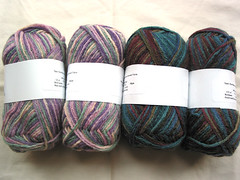 Paradise Fibers Space-dyed BFL yarn