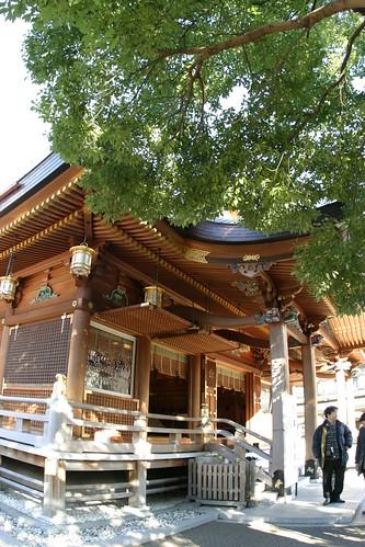 at Shinto Shrine 03