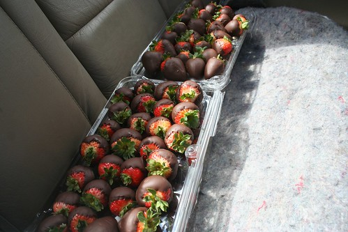 Strawberries in Backseat