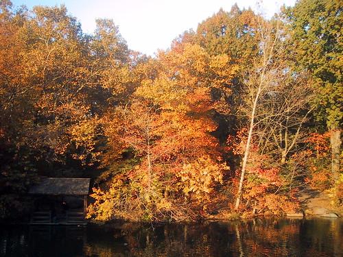 Autumn, Central Park