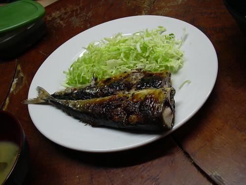 秋刀魚、それは誘惑の魚