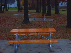 Picnic tables in Toledo's Foxglove Meadow park