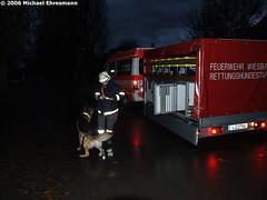 Rettungshundeeinsatz in Eltville 23.11.06