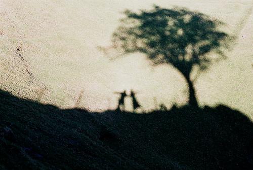 Shadow of us