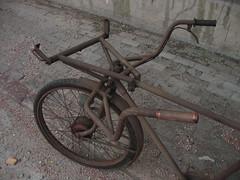 Cargo Bike photo by m.aquila