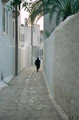 ギリシアの小道