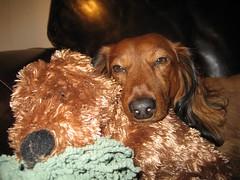 Lulu & Ollie
