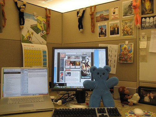 Blue Flat Bear at Work
