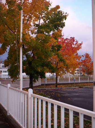 Colores y nubes