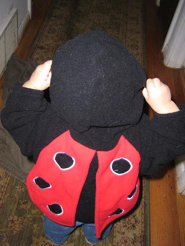 ladybugback