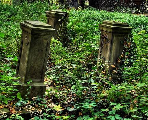 Stary Cmentarz w Łodzi