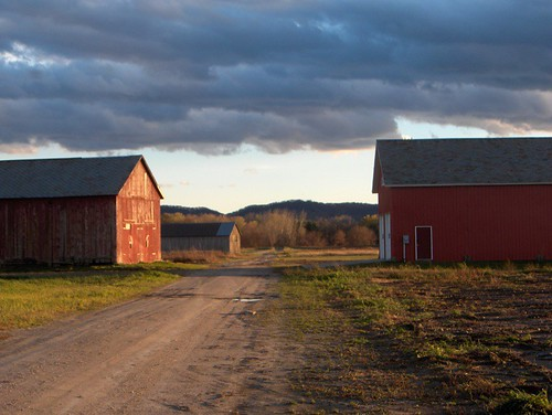 Red Barns in the Sunset