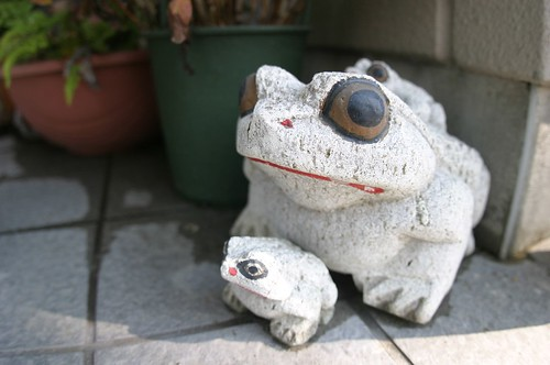 stone frog (suspension bridge 06)