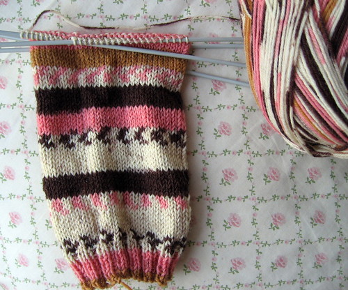wip lolly sock