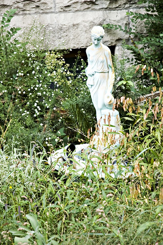 Our Lady of the Overgrown Yard