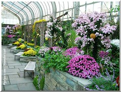 Brookside Gardens Conservatories