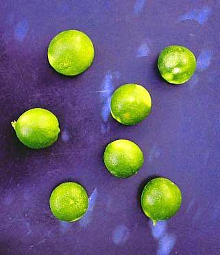 citrons2