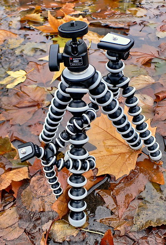 Gorillapod(s) in Hamburg Sankt Georg.