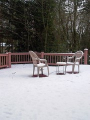 A snowy day at Woodinville 2006/11/27