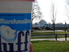 Fluff and Jefferson Memorial