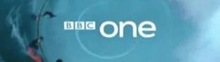 bbcsurfer