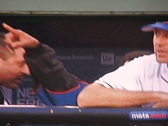 pedro's arm waving from the dugout