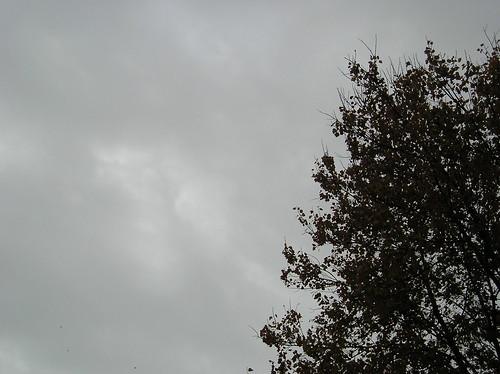 10-28-2006