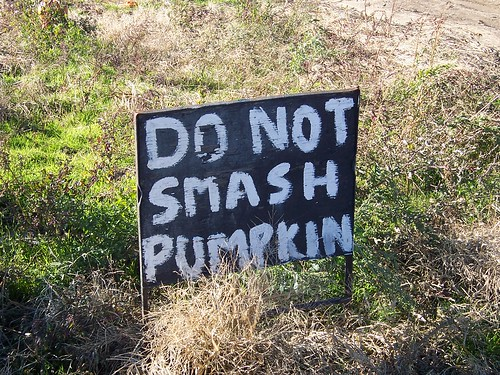 Sign warning visitors not to smash pumpkins