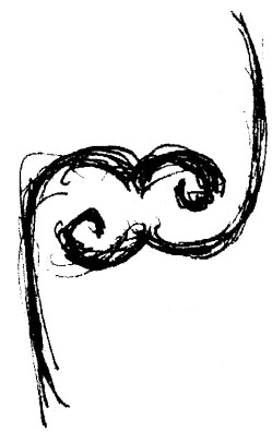 ambigrama_pol