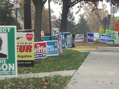 Walking to the polls
