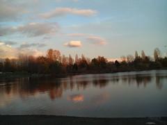 N93 Trout Lake - 19112006111