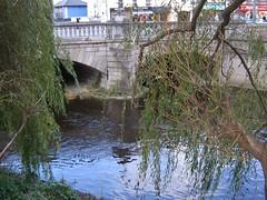the dodder river