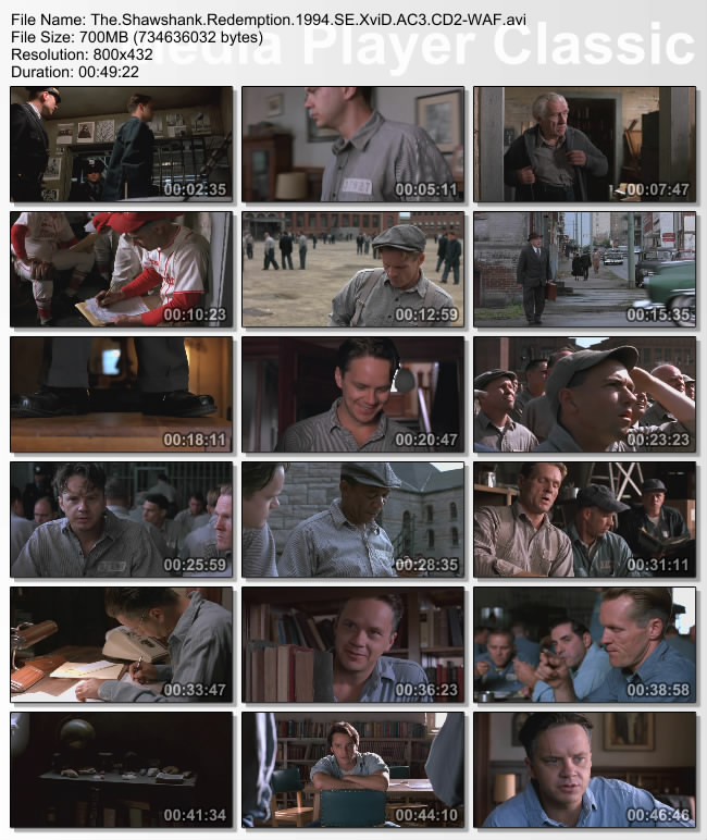 The.Shawshank.Redemption.1994.SE.XviD.AC3.CD2-WAF