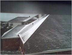 neighbors roof