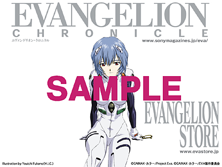 eva chronicle sample