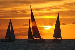 Sails photo by ben cutshall photos