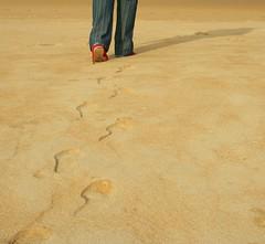 Caminante no hay camino