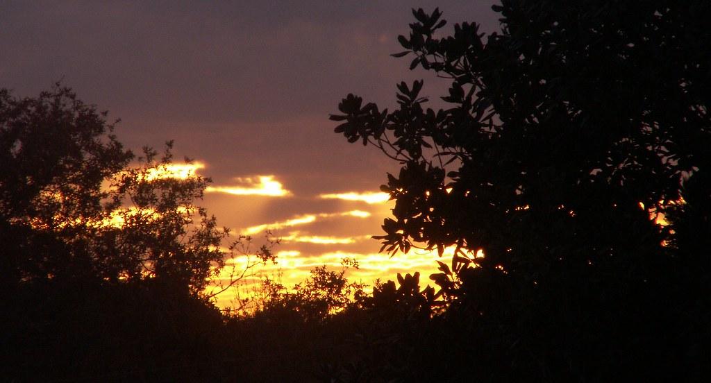 Sunset, 11 December 2006
