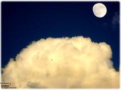 High Sky photo by Co®tex™