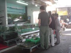52.觀光客在選購海鮮