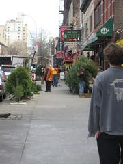 xmas tree store
