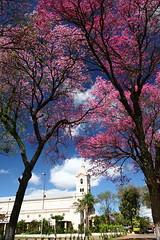 Iglesia Luque