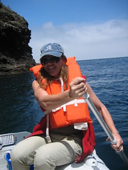 Kayaking off Santa Cruz Island, Channel Islands, California