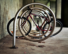 in a spin photo by james m