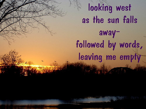 lookingwest