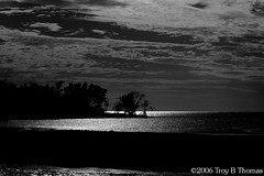 20061213_EvergladesLandscape03