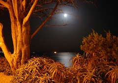 Cascais in moonlight......... photo by ubichan - Away A LOT :o(