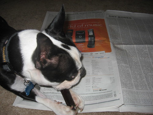 Tanner helps me read the paper
